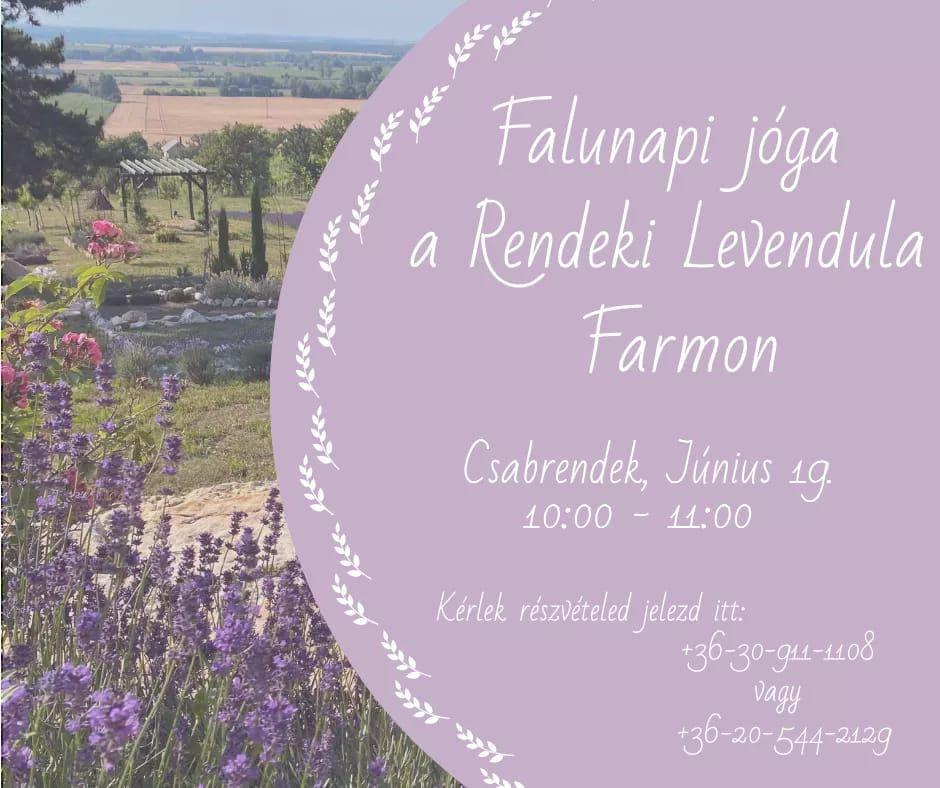 Falunapi jóga a Rendeki Levendula Farmon