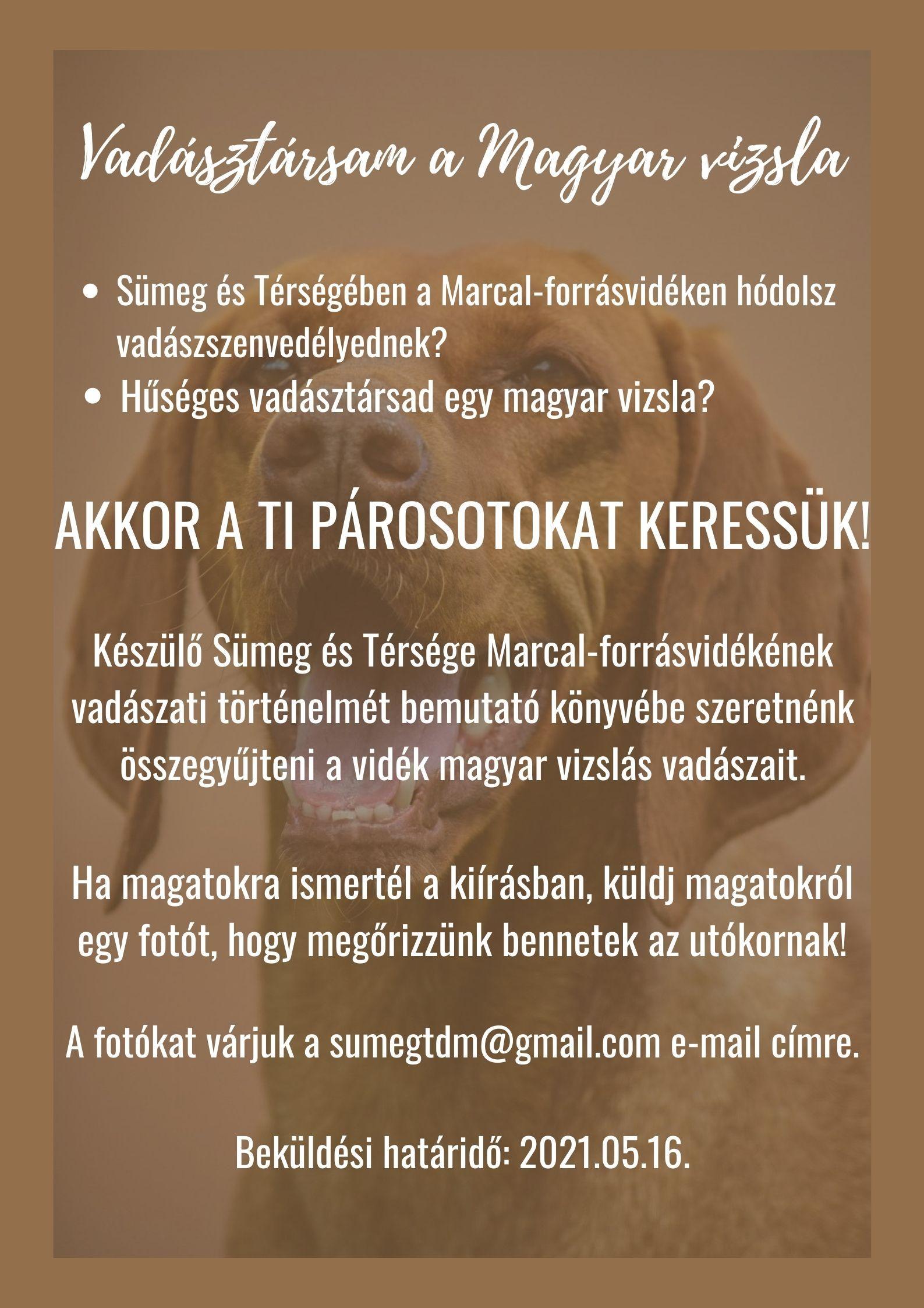 Vadásztársam a Magyar vizsla
